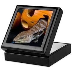 Lizard in Pumpkin Keepsake Box