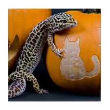 Lizard On Pumpkin Tile Coaster