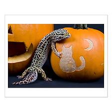Lizard On Pumpkin Small Poster