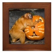 Tamarin With Pumpkin Framed Tile
