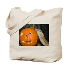 Meerkat On Pumpkin Tote Bag