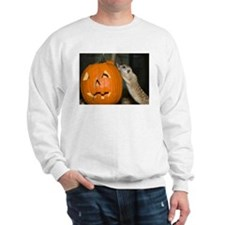 Meerkat On Pumpkin Sweatshirt