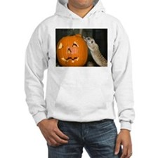 Meerkat On Pumpkin Hooded Sweatshirt