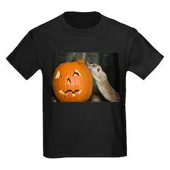 Meerkat On Pumpkin T