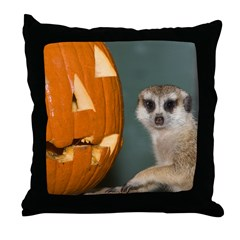 Meerkat Next to Pumpkin Throw Pillow