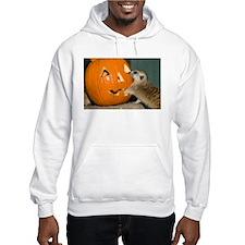 Meerkat Reaching into Pumpkin Hooded Sweatshirt
