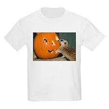 Meerkat Reaching into Pumpkin Kids Light T-Shirt