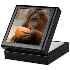 Orangutan Eating Pumpkin Keepsake Box