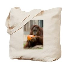 Orangutan Eating Pumpkin Tote Bag