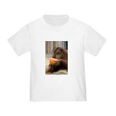 Orangutan Eating Pumpkin T