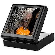 Porcupine Holding Mini Pumpkin Keepsake Box