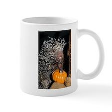 Porcupine Holding Mini Pumpkin Mug