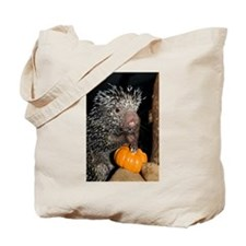 Porcupine Holding Mini Pumpkin Tote Bag