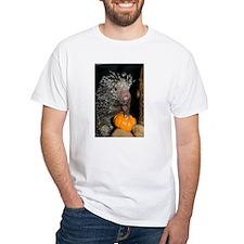 Porcupine Holding Mini Pumpkin Shirt