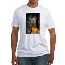 Porcupine Holding Mini Pumpkin Fitted T-Shirt
