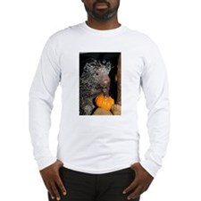 Porcupine Holding Mini Pumpkin Long Sleeve T-Shirt