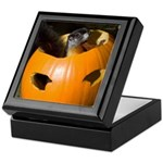Squirrel in Pumpkin Keepsake Box