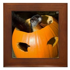 Squirrel in Pumpkin Framed Tile
