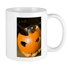Squirrel in Pumpkin Mug