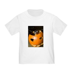 Squirrel in Pumpkin T