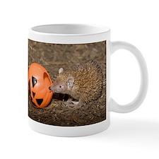 Lesser Tenrec with Pumpkin Mug
