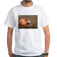 Lesser Tenrec with Pumpkin Shirt