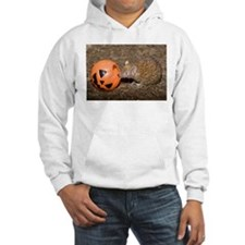 Lesser Tenrec with Pumpkin Hooded Sweatshirt