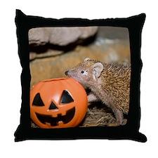 Lesser Tenrec & Pumpkin Throw Pillow