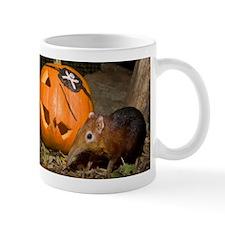 Elephant Shrew With Pumpkin Mug
