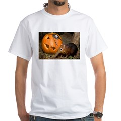Elephant Shrew With Pumpkin Shirt