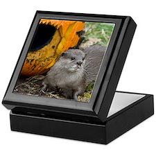 Otter With Pumpkin Keepsake Box