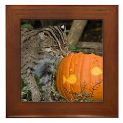 Ocelot With Pumpkin Framed Tile