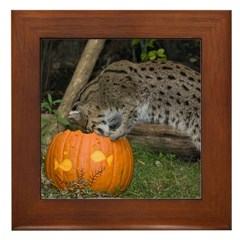 Ocelot Looking into Pumpkin Framed Tile