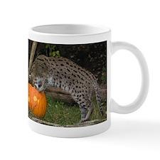 Ocelot Looking into Pumpkin Mug
