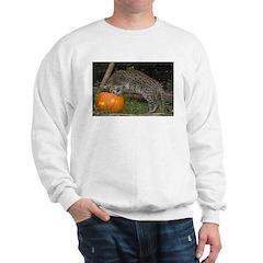 Ocelot Looking into Pumpkin Sweatshirt