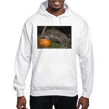 Ocelot Looking into Pumpkin Hooded Sweatshirt