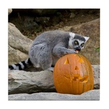 Lemur With Pumpkin Tile Coaster