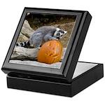 Lemur With Pumpkin Keepsake Box