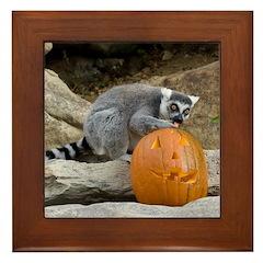 Lemur With Pumpkin Framed Tile
