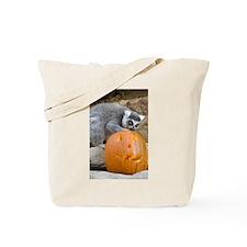 Lemur With Pumpkin Tote Bag