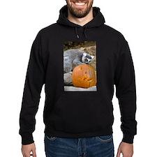 Lemur With Pumpkin Hoodie (dark)