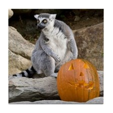 Lemur & Pumpkin Tile Coaster