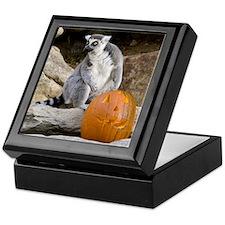 Lemur & Pumpkin Keepsake Box