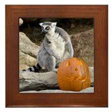Lemur & Pumpkin Framed Tile