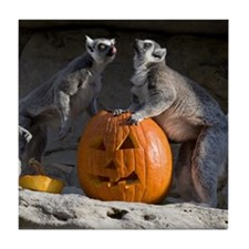 Lemurs With Pumpkin Tile Coaster