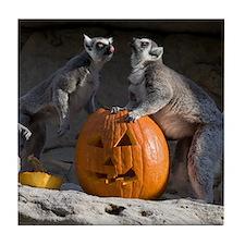 Lemurs With Pumpkin Tile Coaster