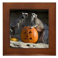 Lemurs With Pumpkin Framed Tile