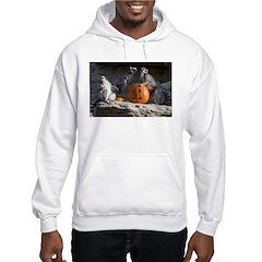 Lemurs With Pumpkin Hooded Sweatshirt