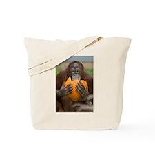 Orangutan with Pumpkin Tote Bag