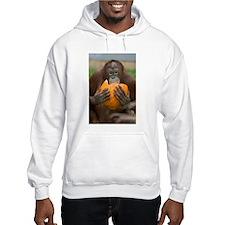 Orangutan with Pumpkin Hooded Sweatshirt